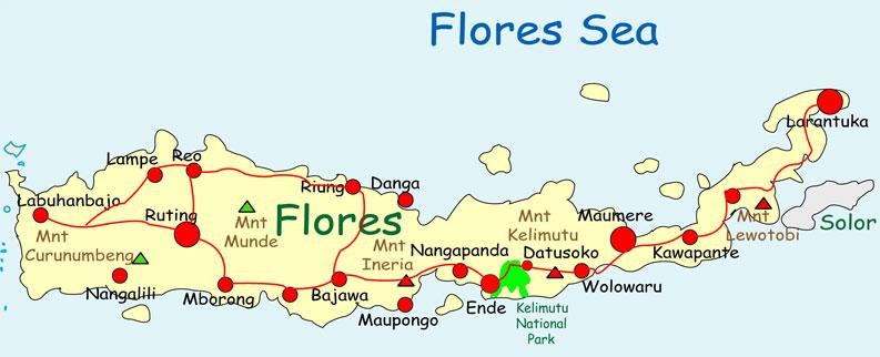 Peta Flores